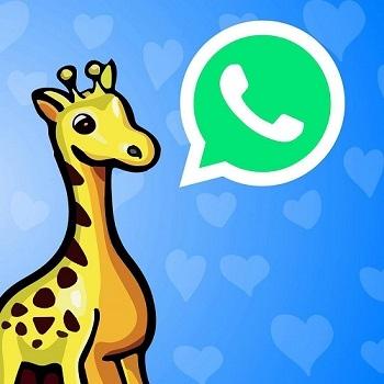 Nachricht via WhatsApp an Spielzeugwelten senden