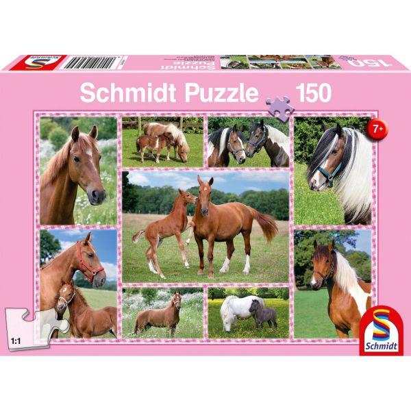 SCHMIDT 56269 - Puzzle - Pferdeträume, 150 Teile