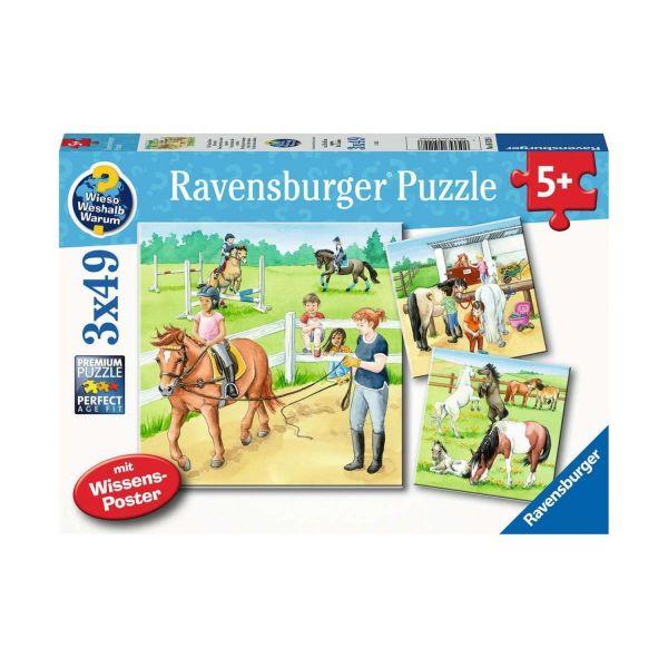 RAVENSBURGER 05129 - Puzzle - Ein Tag auf dem Reiterhof, 3x49 Teile