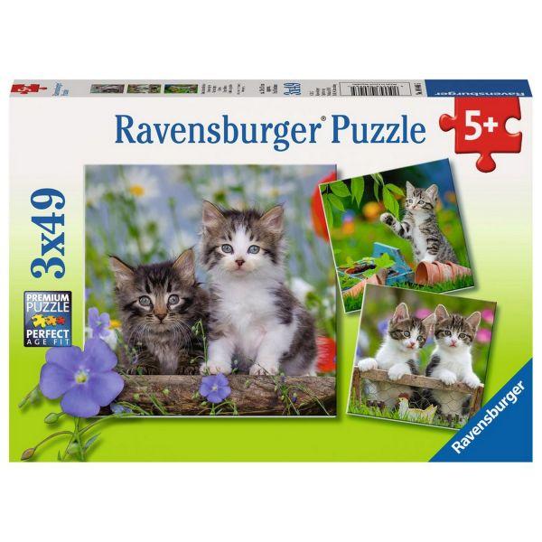 RAVENSBURGER 08046 - Puzzle - Süße Samtpfötchen, 3 x 49 Teile