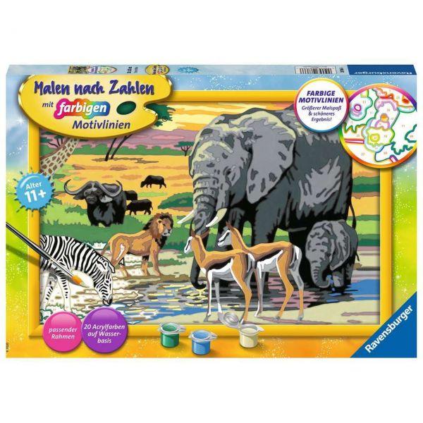 RAVENSBURGER 28766 - Malen nach Zahlen - Tiere in Afrika
