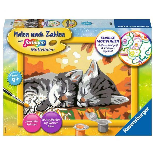 RAVENSBURGER 28696 - Malen nach Zahlen - Kätzchen im Herbst