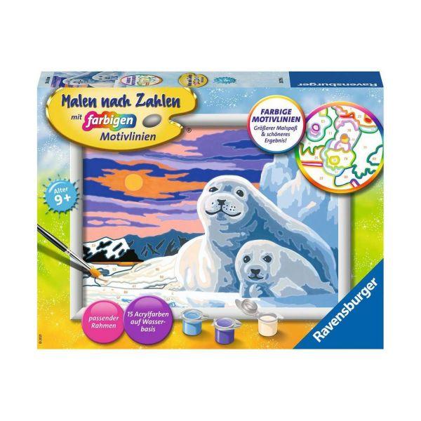 RAVENSBURGER 28779 - Malen nach Zahlen - Niedliche Robben