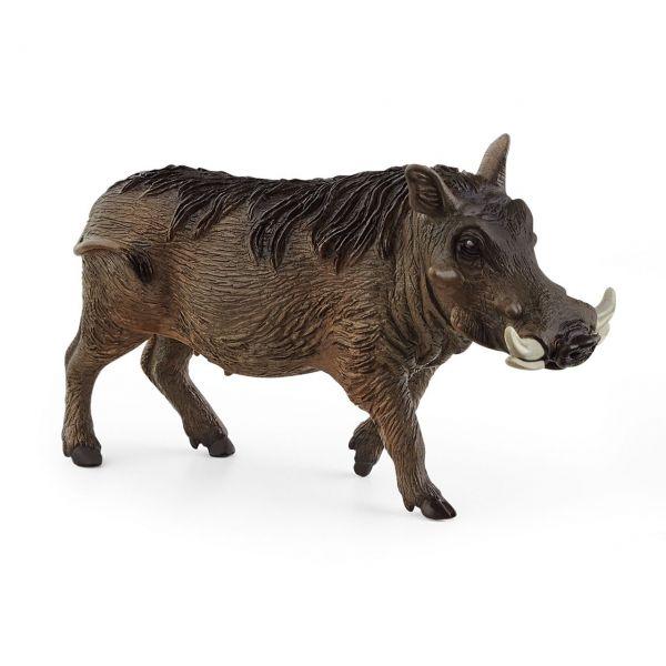 SCHLEICH 14843 - Wild Life - Warzenschwein