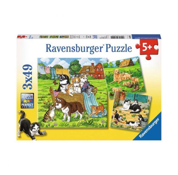 RAVENSBURGER 08002 Süße Katzen und Hunde